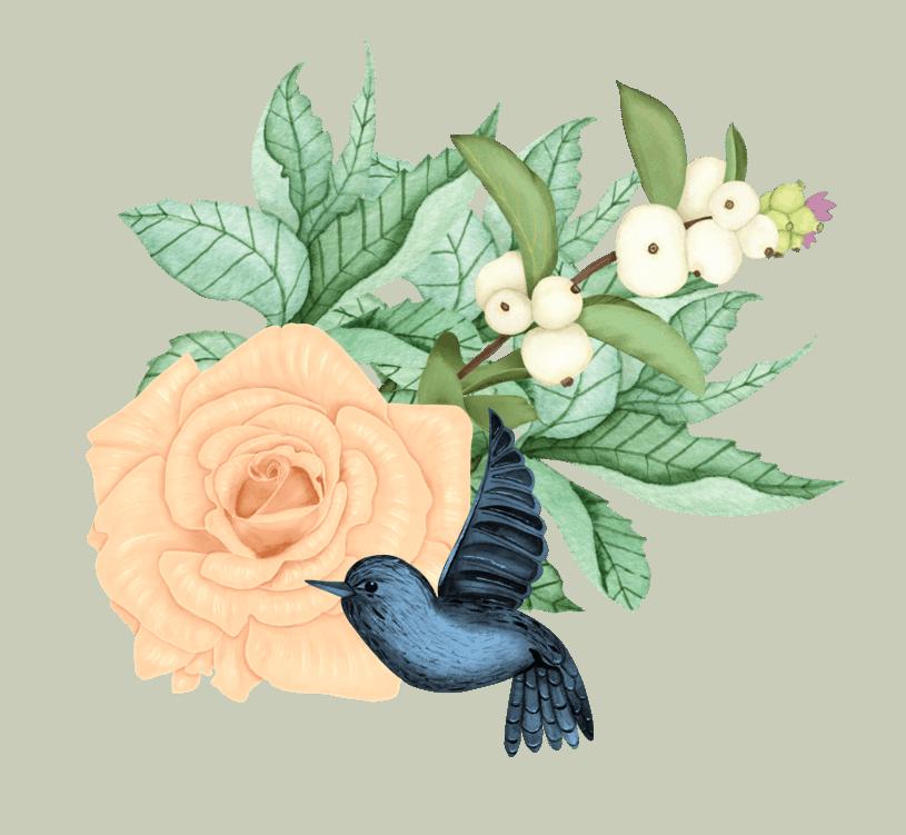 Peace rose, joyful bird