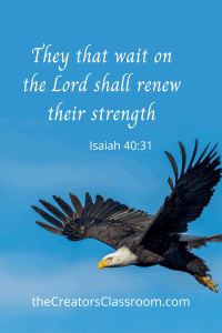 "Photo of a scripture card that can be downloaded by the readers. It is of an eagle in flight and text overlay that says, ""They that wait on the Lord shall renew their strength. It is an example of finding joy in God's creation."