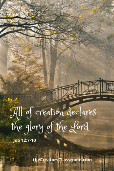 Photo of a small bridge over a stream, with a scripture overlay.