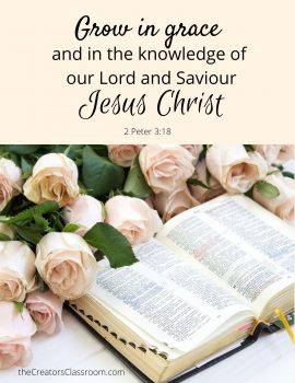 """Photo of a  Scripture card with """"Grow in grace and in the knowledge of our Lord and Savior Jesus Christ.""""  This verse from 2 Peter 3:18 is one verse for Christian faith for beginners."""