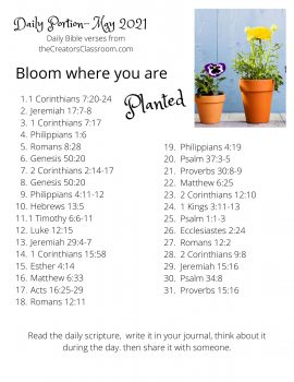 Photo of the May Bible reading plan.