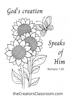 Black and white drawing of butterfly on sunflowers- intended for adult coloring and with the Scripture from  Romans 1:20.