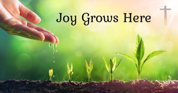 """Photo of young plants in different stages of growth, receiving water , a cross, and text, """"Joy Grows Here""""."""